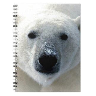 Polar Bear Notebooks