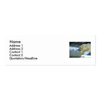[Polar Bear on a Hot Day] Double-Sided Mini Business Cards (Pack Of 20)