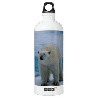Polar Bear on pack ice Aluminum Water Bottle