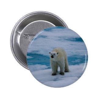 Polar Bear on pack ice Buttons