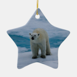 Polar Bear on pack ice Ceramic Ornament