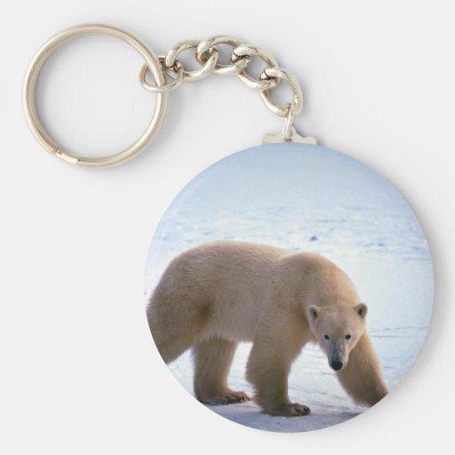 Polar Bear on snow Keychains