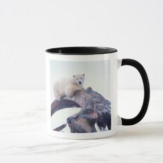 Polar bear on top of a bowhead whale jaw bone, mug