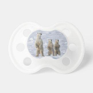 Polar bear pacifier