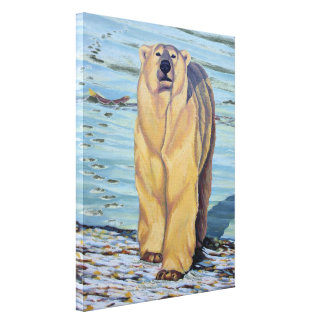 Polar Bear Painting Canadian Wildlife Canvas Print