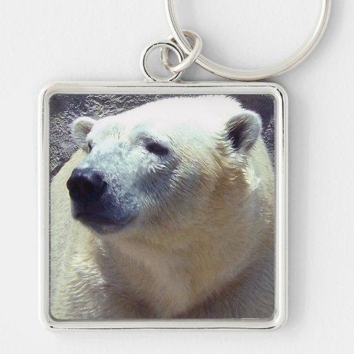 Polar Bear Photo Closeup Nikita Kansas City Zoo Keychains