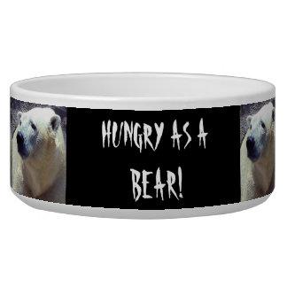 Polar Bear Photo Closeup Nikita Kansas City Zoo Pet Water Bowl