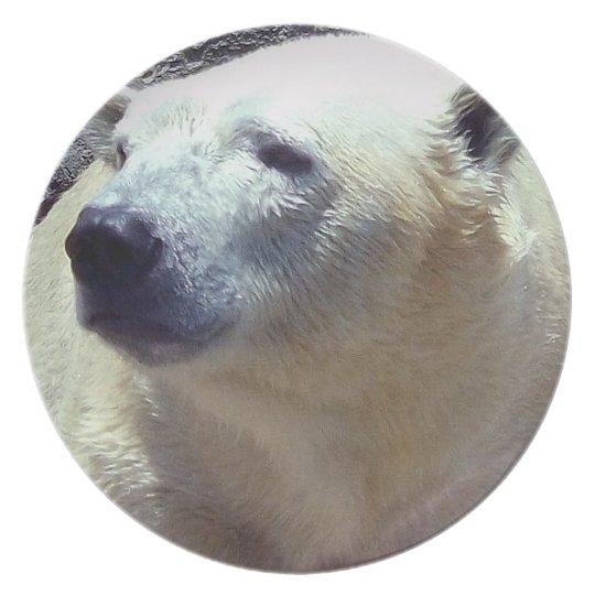 Polar Bear Photo Closeup Nikita Kansas City Zoo Plate
