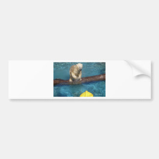 Polar Bear Playing.jpg Bumper Sticker