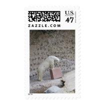 Polar Bear Playing Postage Stamps