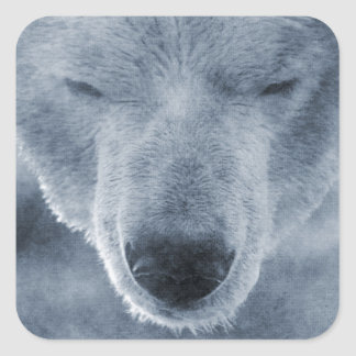 Polar Bear Portrait Square Sticker