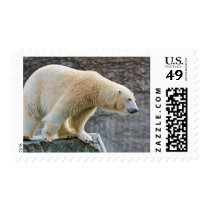 Polar Bear Postage