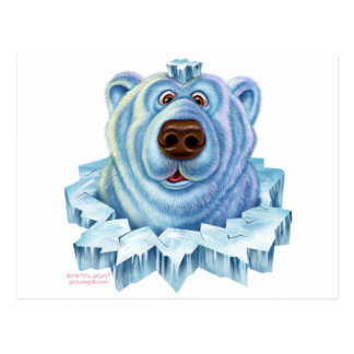 polar bear post cards