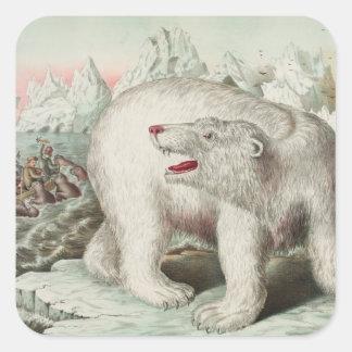 Polar Bear Poster Square Sticker