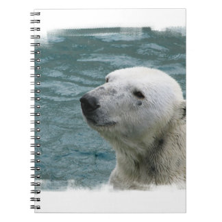 Polar Bear Profile Notebook