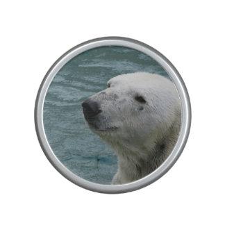 Polar Bear Profile Speaker