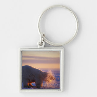 Polar bear pulling its head out of a hole in the keychain