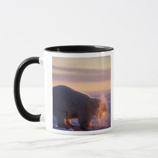 Polar bear pulling its head out of a hole in the mug