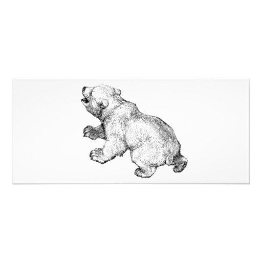 POLAR BEAR RACK CARD DESIGN