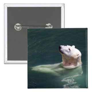 Polar bear resting pinback button