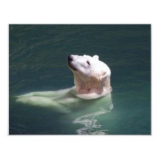 Polar bear resting card