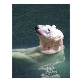 Polar bear resting flyer