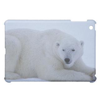 Polar Bear Resting in Snow iPad Mini Covers