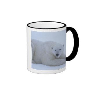 Polar Bear Resting in Snow Ringer Coffee Mug