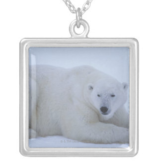 Polar Bear Resting in Snow Silver Plated Necklace