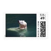 Polar bear resting postage