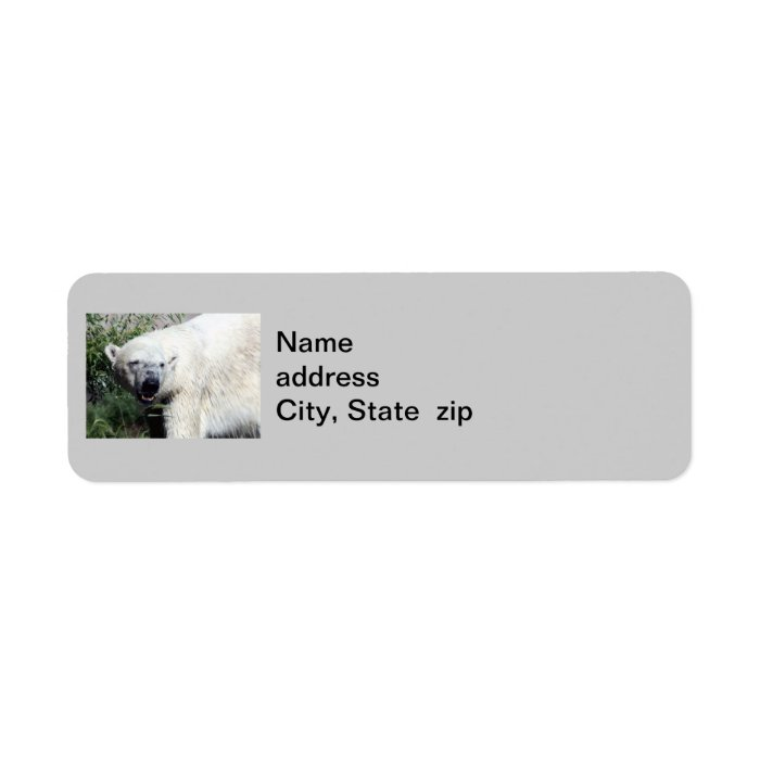 Polar Bear Return Address Labels