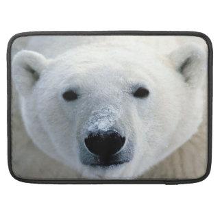 Polar Bear Rickshaw  Laptop Sleeve MacBook Pro Sleeves
