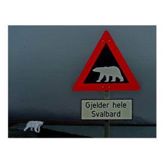 Polar bear road sign and polar bear. postcard