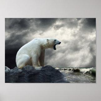 Polar Bear Roaring Poster
