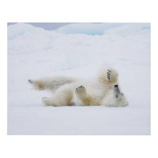 Polar bear rolling in snow, Norway Panel Wall Art