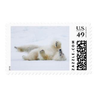 Polar bear rolling in snow, Norway Postage