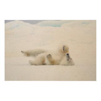 Polar bear rolling in snow, Norway Wood Wall Decor