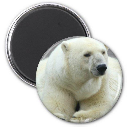 Polar Bear Round Magnet