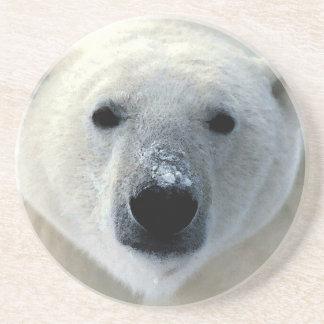 Polar Bear Sandstone Coaster