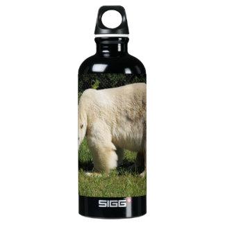 polar bear scowling aluminum water bottle