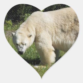polar bear scowling heart sticker