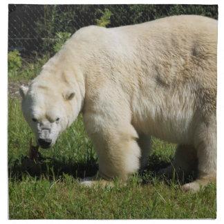 polar bear scowling Napkins
