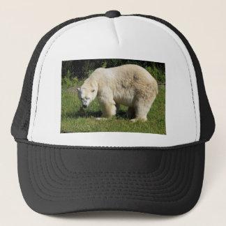 polar bear scowling trucker hat