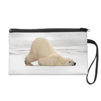 Polar bear scratching itself on frozen tundra wristlet clutch