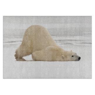 Polar bear scratching itself on frozen tundra cutting boards