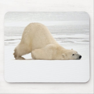 Polar bear scratching itself on frozen tundra mouse pad