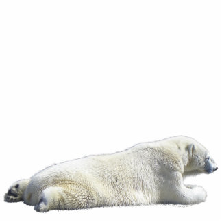POLAR BEAR (sculpted) Wildlife Gift Item Statuette