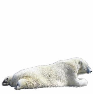 POLAR BEAR (sculpted) Wildlife Magnet Acrylic Cut Out