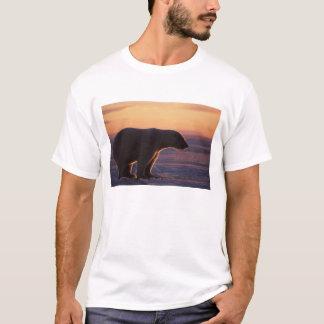 Polar bear silhouette, sunrise, pack ice of T-Shirt