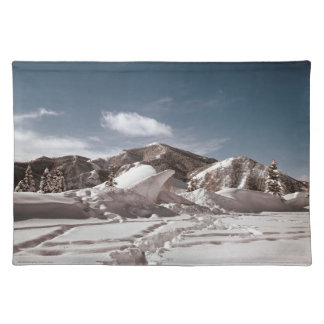 Polar Bear Snow Sculpture Cloth Placemat